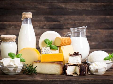 çin süt ürünleri ihracat yapcaak